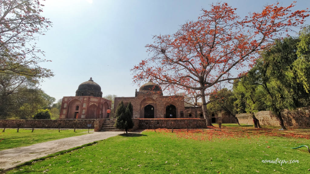 Afsarwala Tomb and Mosque and beautiful tree